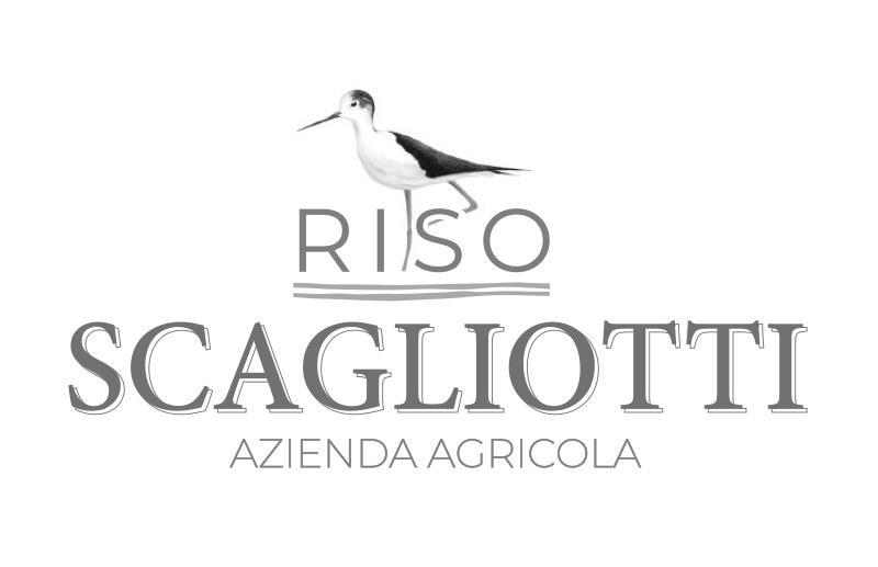 Riso Piemonte coltivazione